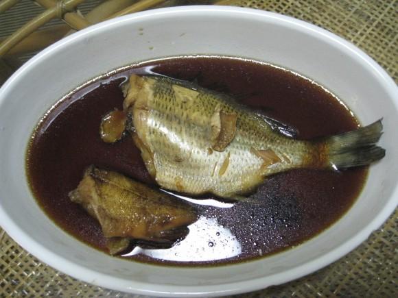 チヌとガシラの煮つけ