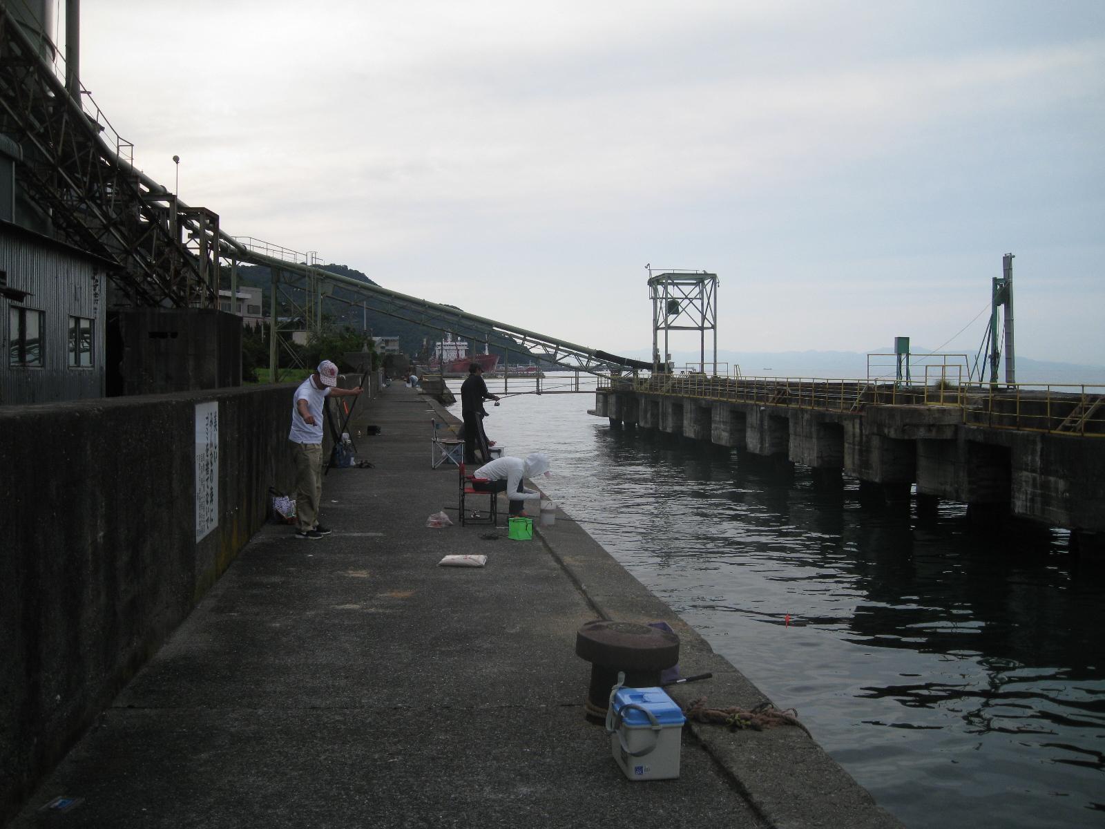 和歌山下津港で紀州釣りとウキサ...