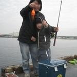 ファミリーフィッシング 一年ぶりの汐見埠頭(砂上げ場)でサビキ釣り