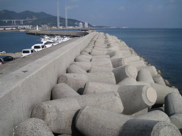 浦港のテトラ帯