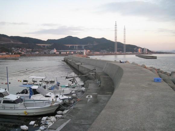 浦港の様子