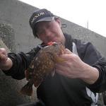 助松埠頭で良型のカサゴゲット