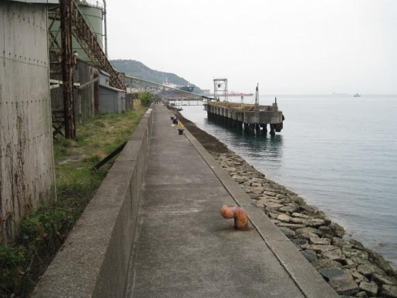 下津港の様子(1)