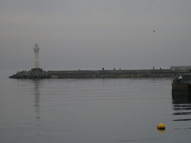 深日漁港の白灯