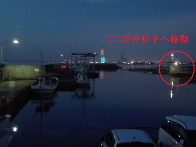 樽井漁港内 外灯下