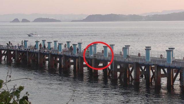 下津ピアーランドの桟橋