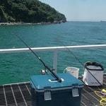 下津ピアーランドで呑ませ、ヌカ切り、紀州釣りで大苦戦
