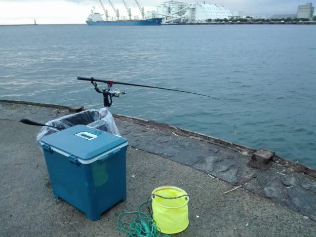 本日の釣り座『食コン和歌山側ドラム1番』
