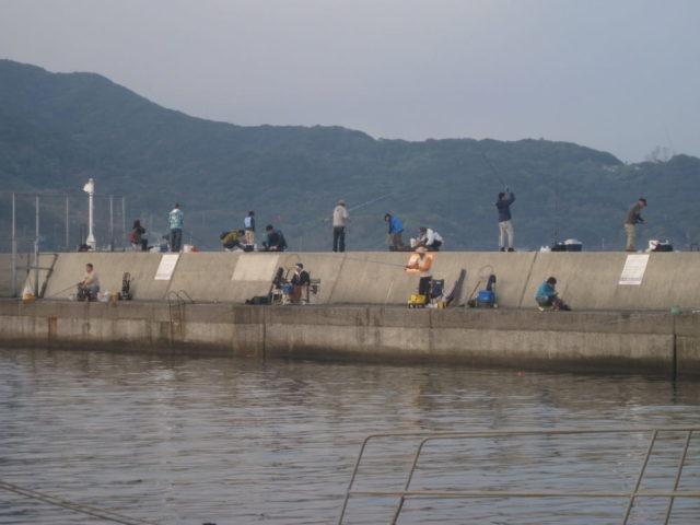 小島漁港の様子