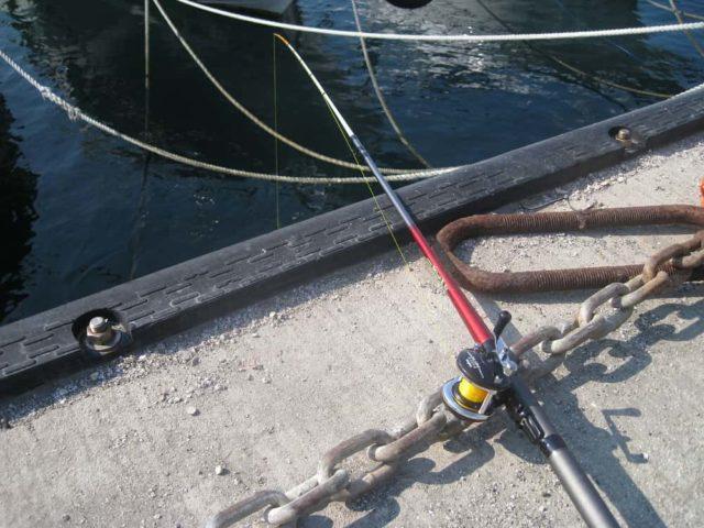 仕切り直しのカワハギ釣り