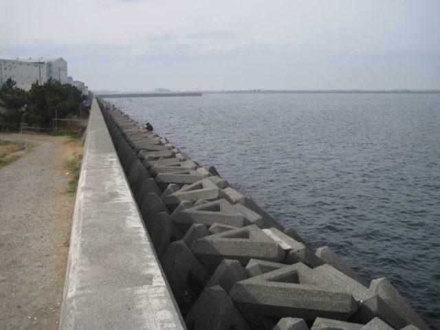 助松埠頭の沖向きテトラ