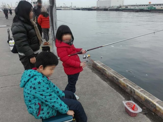 管理人一家のサビキ釣り風景