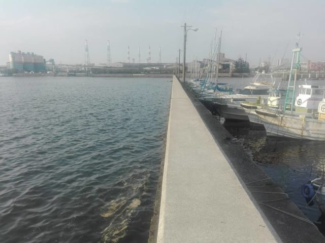 石津漁港沖向きの波止