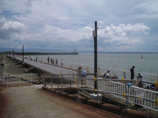 南港魚つり園護岸の様子