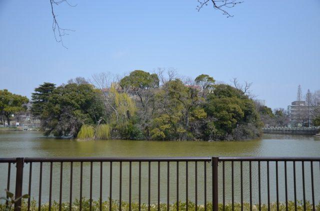万代池(大阪市住吉区)の風景