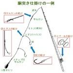 基本的な釣り糸の結びの種類を知る【胴突き仕掛け編】