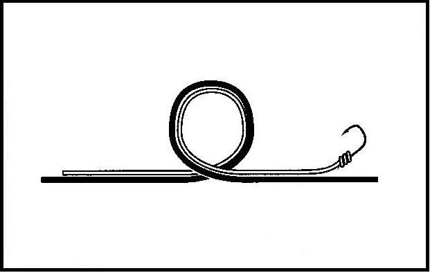 モトスへのエダスの結び方(1)