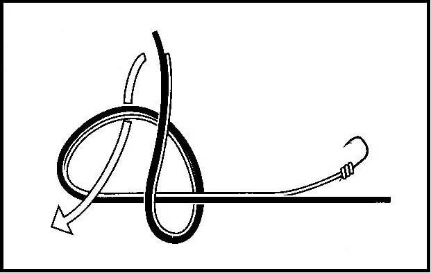 モトスへのエダスの結び方(2)