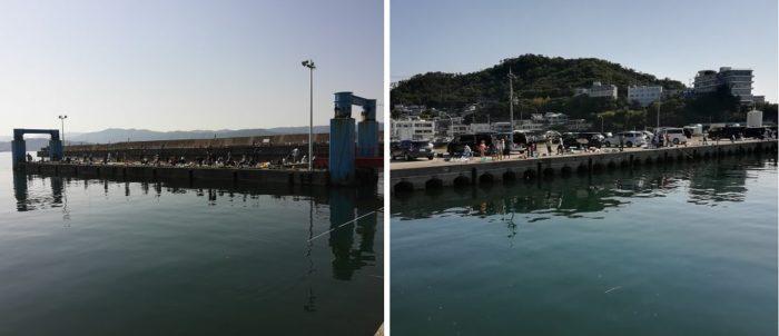 田ノ浦漁港 港湾内の混雑の様子