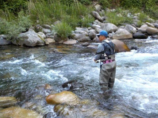 淡水魚の釣り場の一つ【渓流】