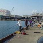 『釣り場』によって釣れる魚は違う【海水魚の場合】