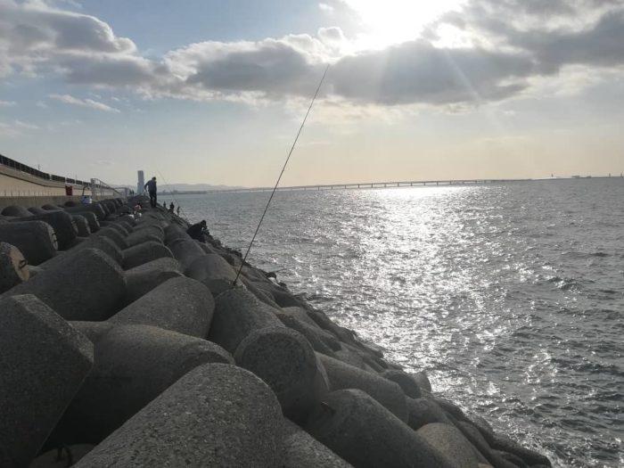 貝塚人工島沖向きテトラ帯
