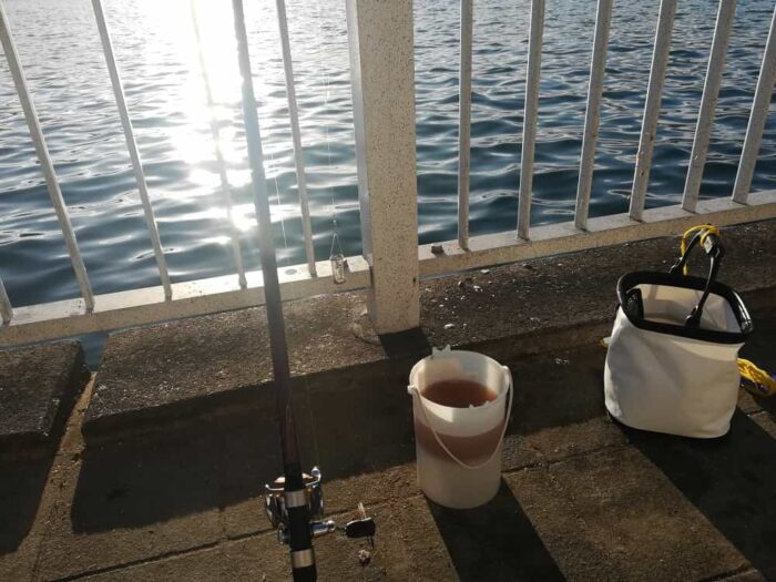 サビキ釣りでエサのアジを狙う