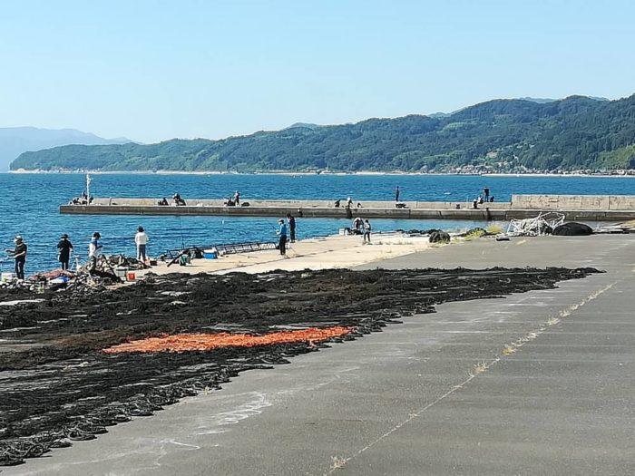 伊根港の釣り場【網干場】