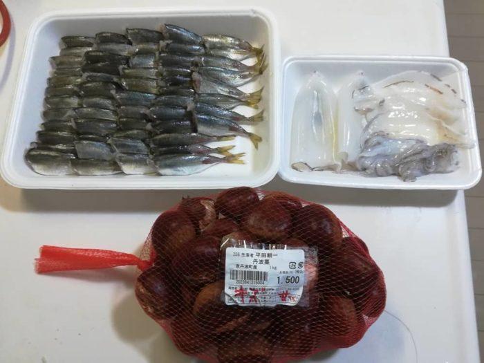 本日の小橋漁港での釣果と丹波栗