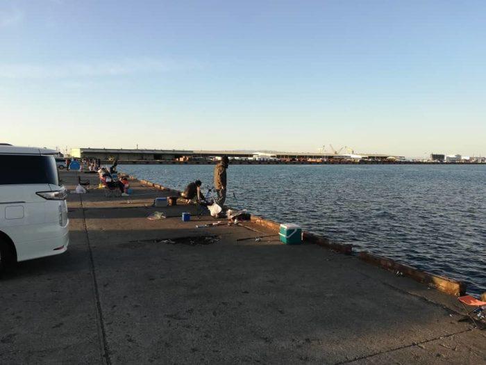 汐見埠頭の砂上げ場はタチウオ客で大混雑