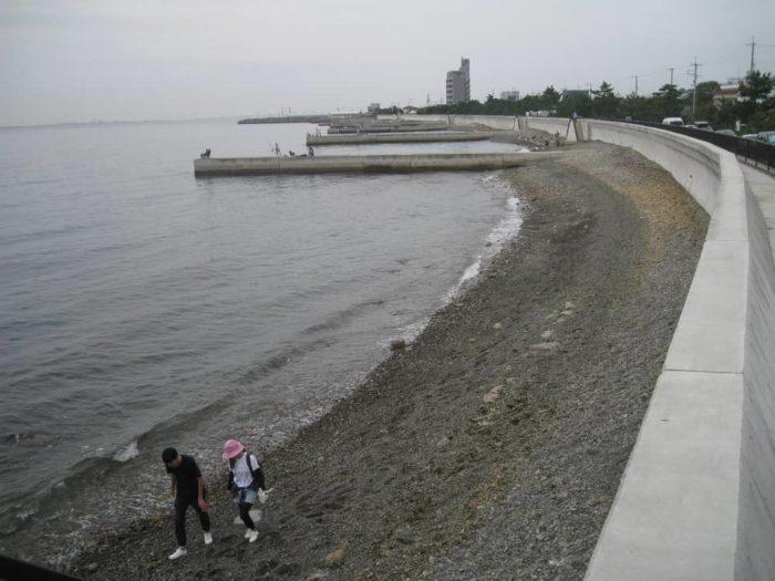 ファミリースポット【みさき公園裏】釣り場