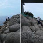【2020年秋】大阪湾のタチウオ釣果に異常あり