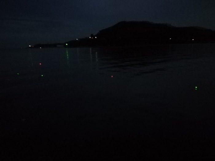 日が暮れて予想外に並ぶ電気ウキ