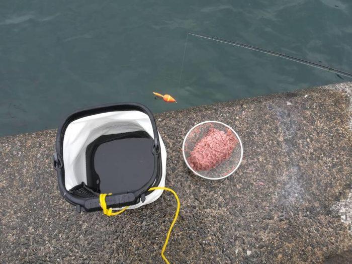 サビキ釣りでエサのアジ釣り開始