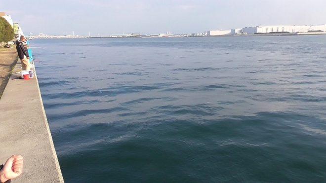 かもめ大橋下ポイント③護岸(2)