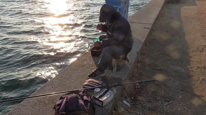 かもめ大橋下ポイント護岸で一人アジ爆釣