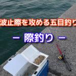 波止の際釣り -胴突き仕掛けで挑む五目釣り-