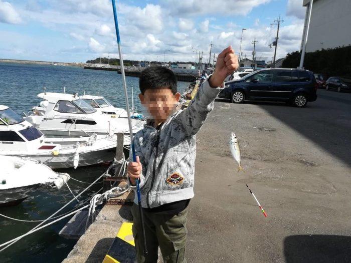 釣り場とコツを把握していれば日中でもアジの釣果は上がる