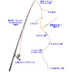 紀州釣りの誘導ウキ釣り仕掛け(寝ウキ)