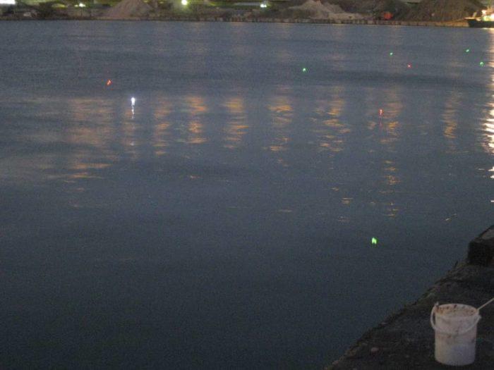 夕暮れ時に並ぶタチウオ釣り師の電気ウキ