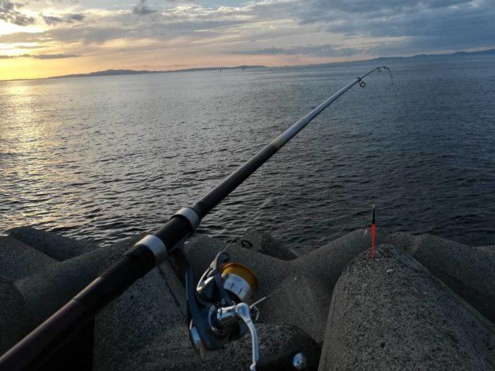 夕マズメ時に接岸する太刀魚
