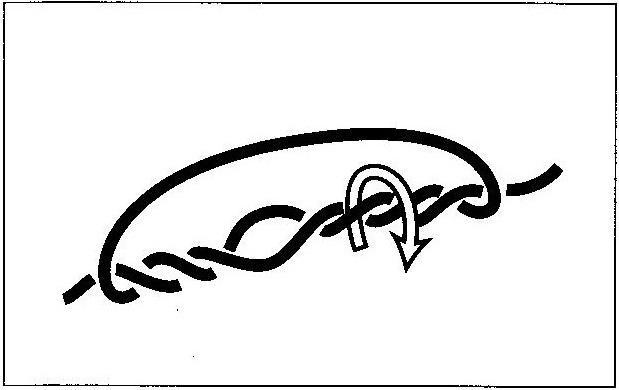 モトスへのチチワの作り方(2)