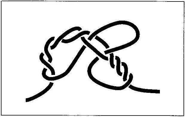 モトスへのチチワの作り方(3)