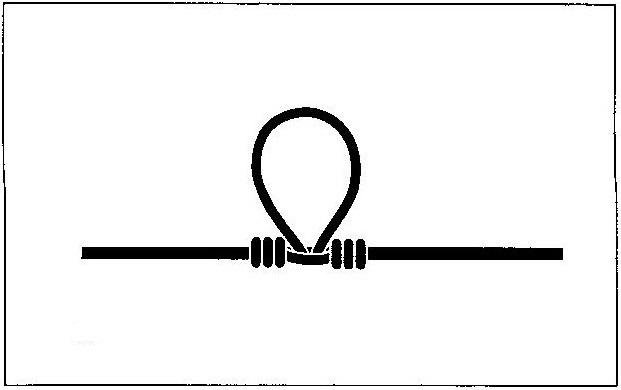 モトスへのチチワの作り方(4)