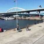 フェリーターミナル南港大橋下の釣り場