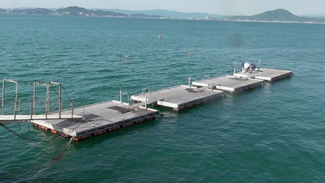 桟橋の根元に設置された筏
