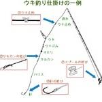 基本的な釣り糸の結びの種類を知る【ウキ釣り仕掛け編】