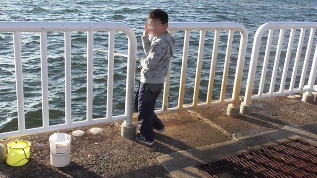 魚つり園の安全柵